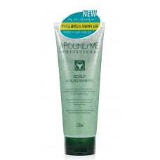 Отшелушивающий шампунь для волос и кожи головы AROUND ME Professional Scalp Scaling Shampoo
