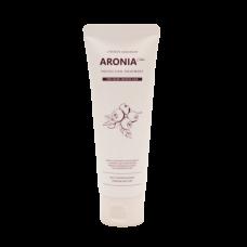 Маска с экстрактом аронии для окрашенных волос, 100 ml EVAS Pedison Institut-beaute Aronia Color Protection Treatment